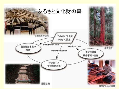 ふるさと文化財の森