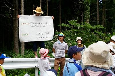 0608キラ森林038